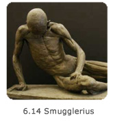 6.14 Smugglerius