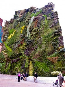 Vertical Garden at CaixaForum in Madrid by pdbreen on Flickr. Used under a Creative Commons licence.