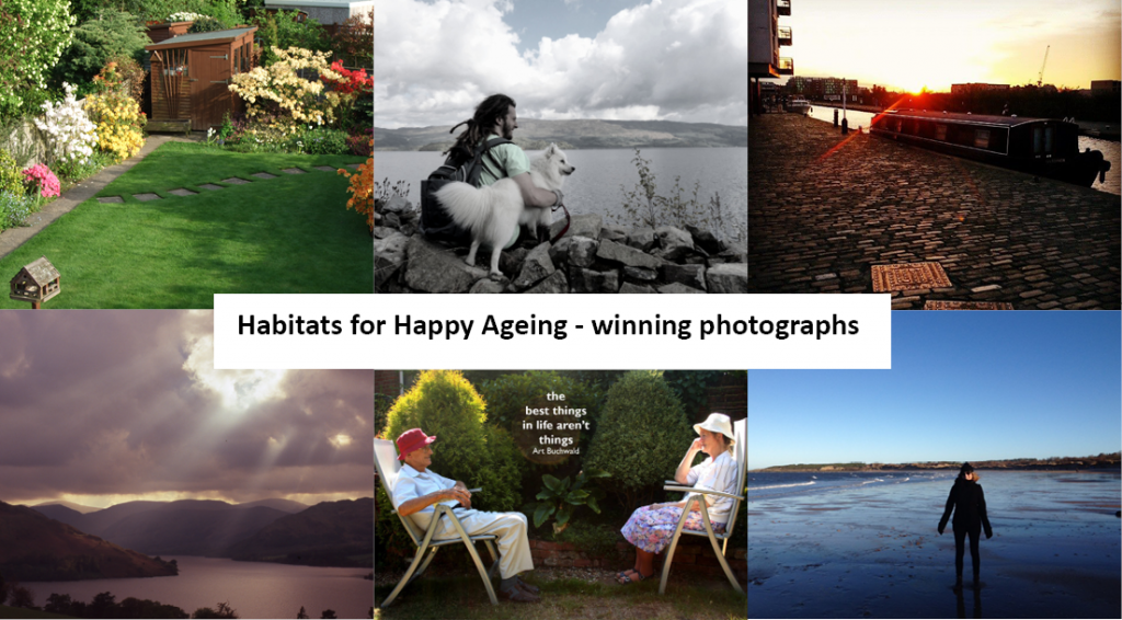 Montage of photography competition entries
