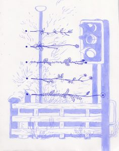 Juniper Weeds III